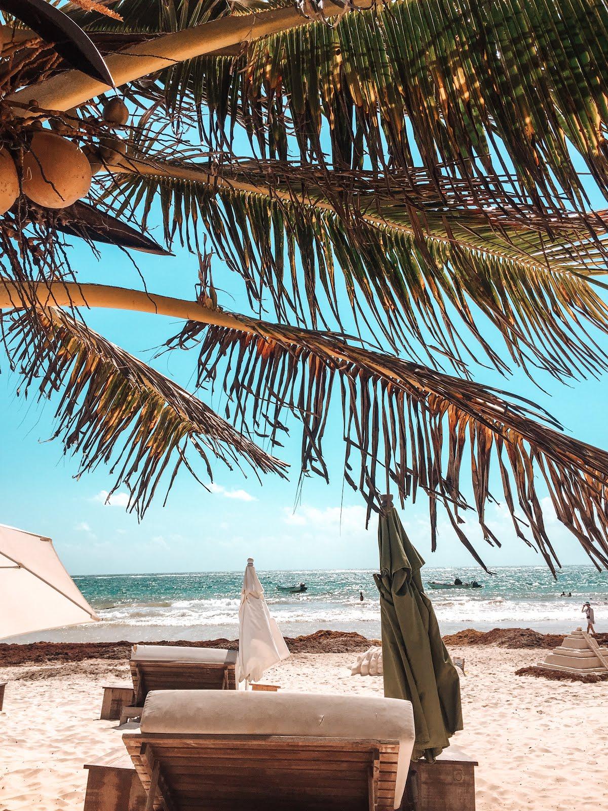 plage paradisiaque à Tulum