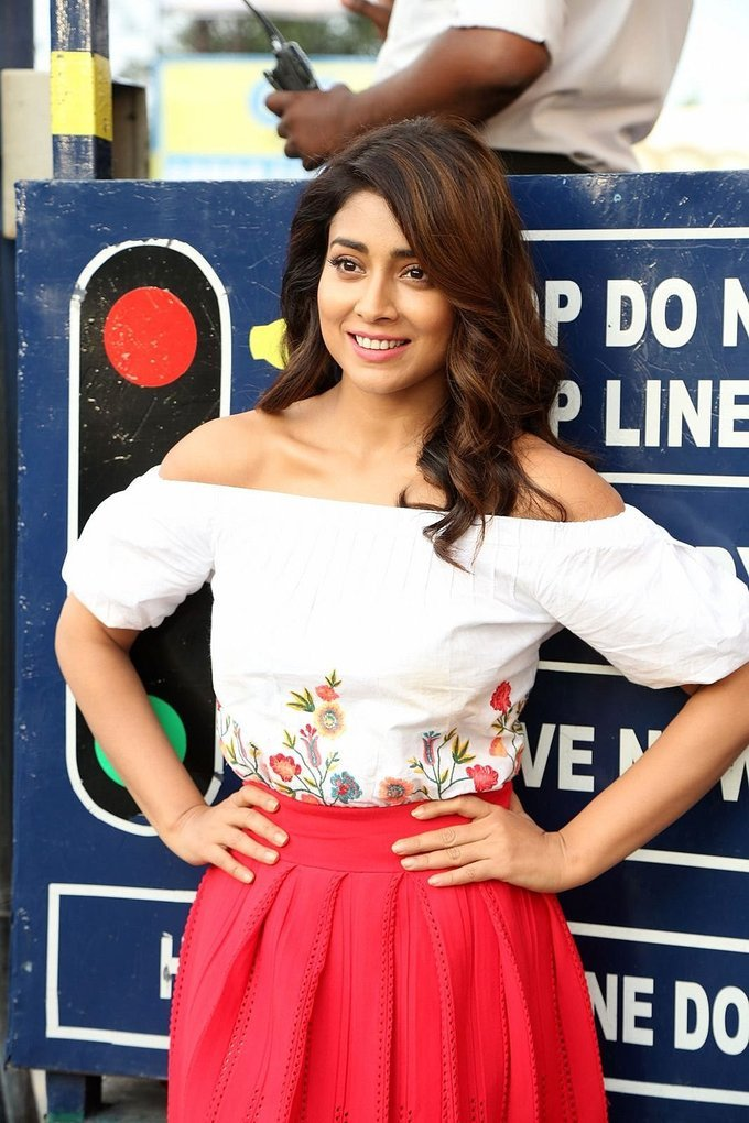 Shriya Saran Photoshoot during Interview For Paisa Vasool