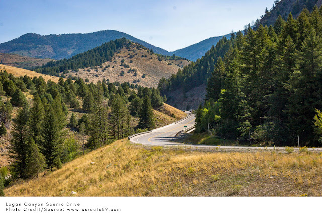 highway winding through hills with trees