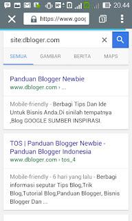 Cara Cepat Agar Artikel Cepat DI Index Google