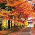 6 Negara Terindah Saat Musim Gugur Tiba
