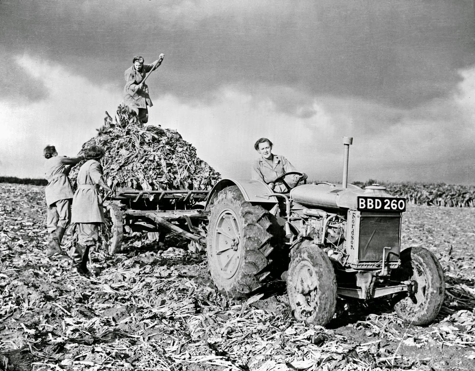 Vintage Photos of Land Girls During World War II ~ Vintage ...