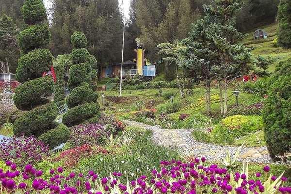 taman bunga di Indonesia