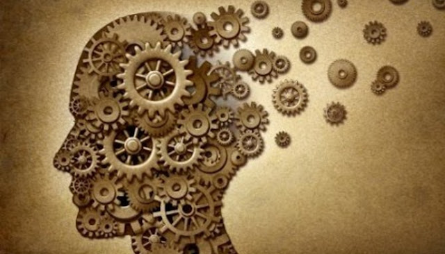 Lima Jenis Makanan Berikut Mampu Mencegah Timbulnya Penyakit Alzheimer