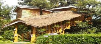 Tree House In Manali Picnic Spot