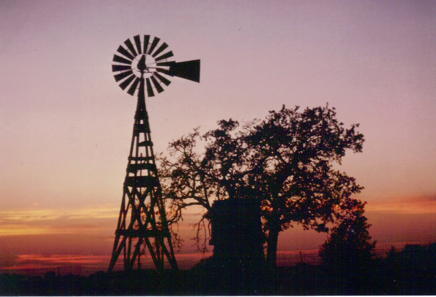 LOVE SUNSETS AND WINDMILLS!