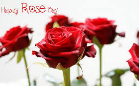 Happy Rose Day SMS in Hindi for couples
