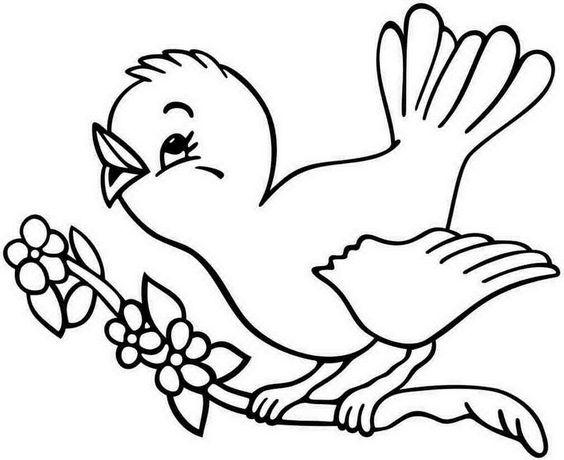 Tranh tô màu con chim đậu trên cành hoa