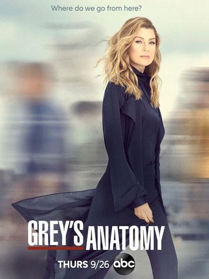 Grey's Anatomy – Saison 16 [Streaming] [Telecharger]
