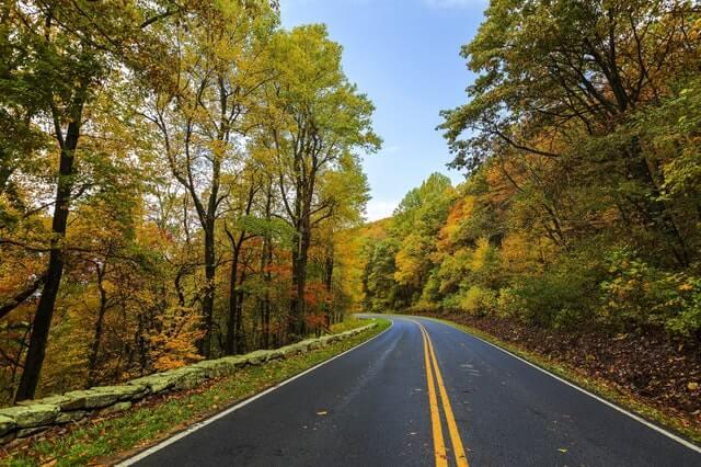 Asphalt Autumn Beauty Colorful HD Copyright Free Image