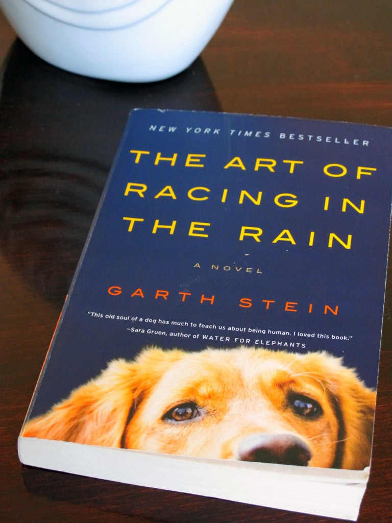 The Art Of Racing In The Rain: Clothed With Grace: The Art Of Racing In The Rain
