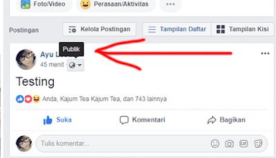 mengubah status facebook menjadi publik agar bisa dilihat semua orang