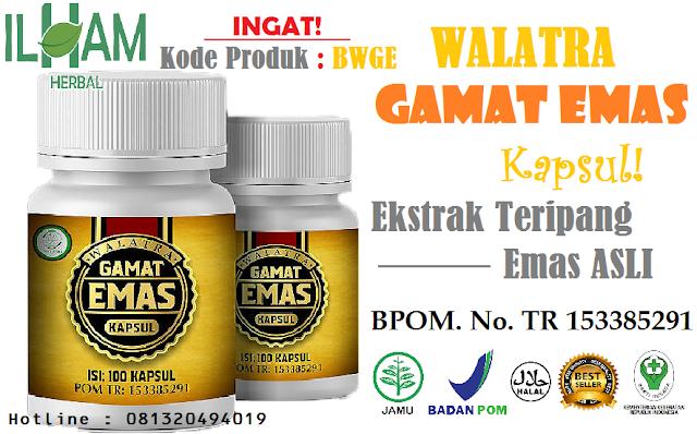 http://produkberkahwalatra.com/walatra-gamat-emas-kapsul/