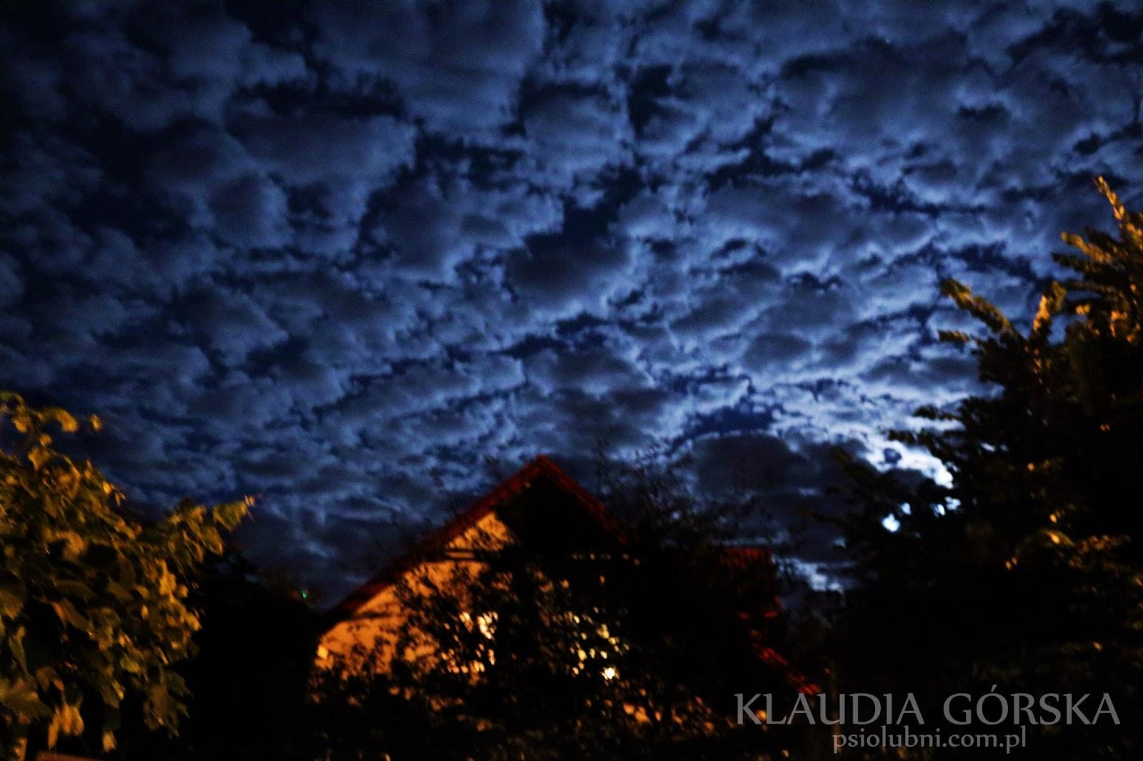 zdjęcie nocą, zdjęcie nieba, zdjęcie nieba nocą, granatowy, domek, księżyc, kolory, psy,