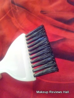Vega Professional Hair brush