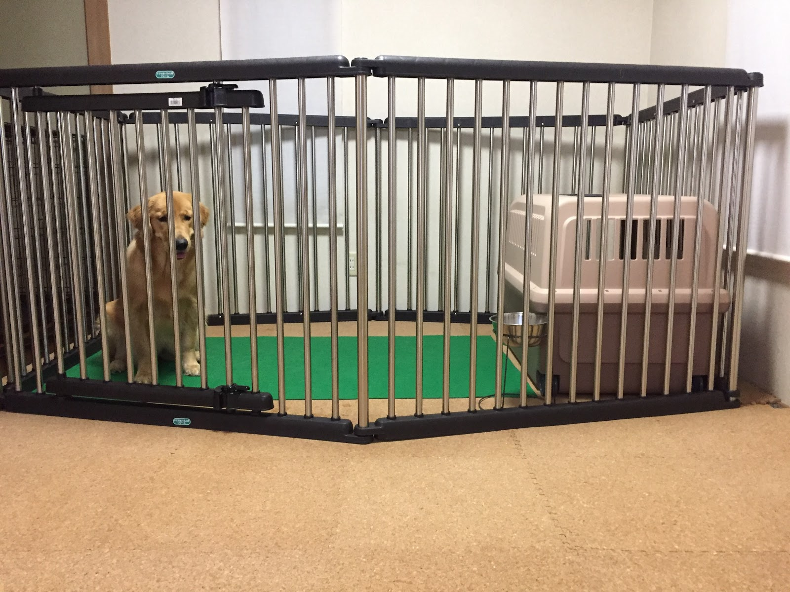 犬 クレート 大型