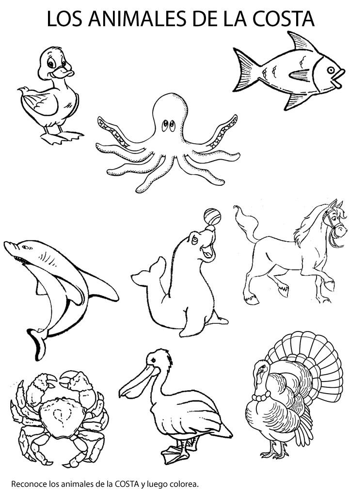 Dibujos Para Colorear Bosque Animales Ideas Creativas
