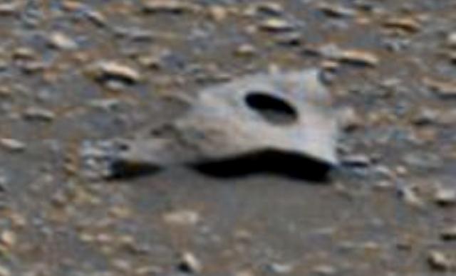 New Mars Discovery Of Sheet Metal With Perfect Circle In It Metal%252C%2Bsheet%252C%2Bwar%252C%2Bbattle%252C%2BMars%252C%2BJohn%2BCarter%252C%2BUFO%252C%2BUFOs%252C%2Bsighting%252C%2Bsightings%252C%2Balien%252C%2Baliens%252C%2BET%252C%2Banomaly%252C%2Banomalies%252C%2Bancient%252C%2Barchaeology%252C%2Bastrobiology%252C%2Bpaleontology%252C%2Bspace%252C%2Bscience%252C%2Bnews%252C%2Btech%252C%2Bsecret%252C%2Bhackers%252C%2Barea%2B51%252C%2BEllis%2BAFB%252C%2B4