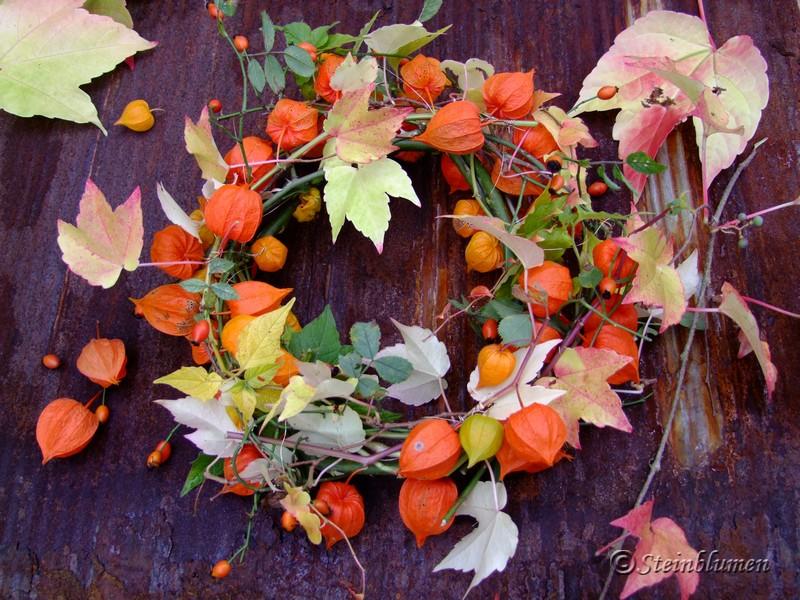 SteinBlumen Herbstdeko mit Lampionblumen