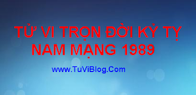 XEM TỬ VI KỶ TỊ 1989