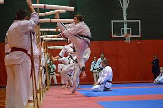 Martial arts black belt doing a high flying jump kick