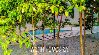 Warih-Homestay-Green-Scenery-At-Children-Swimming-Pool