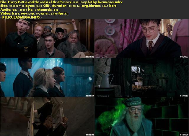 Descargar Harry Potter y la orden del Fénix Latino por MEGA.