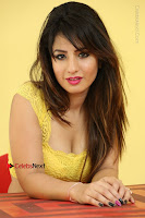 Cute Telugu Actress Shunaya Solanki High Definition Spicy Pos in Yellow Top and Skirt  0549.JPG