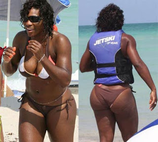 Venus Williams Hot Images