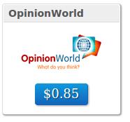 panel opinion world