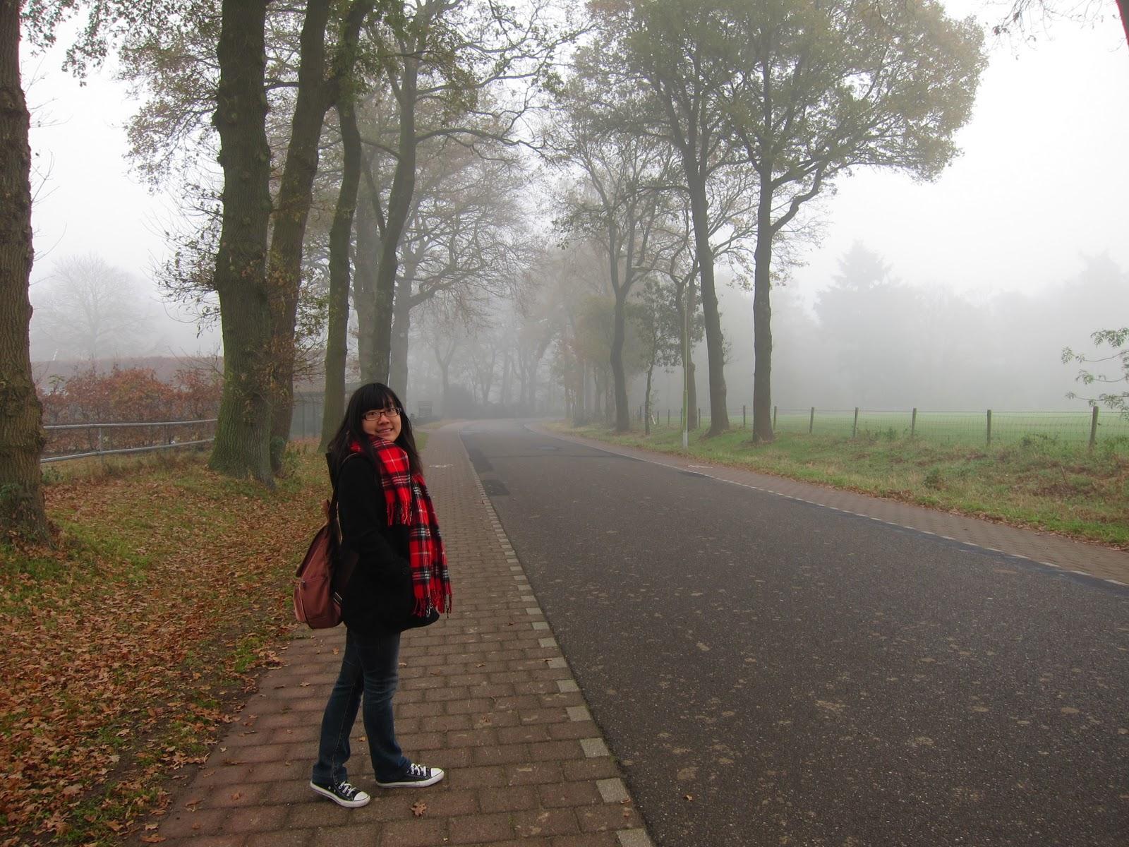 美好的旅行: 荷蘭的梵谷森林國家公園