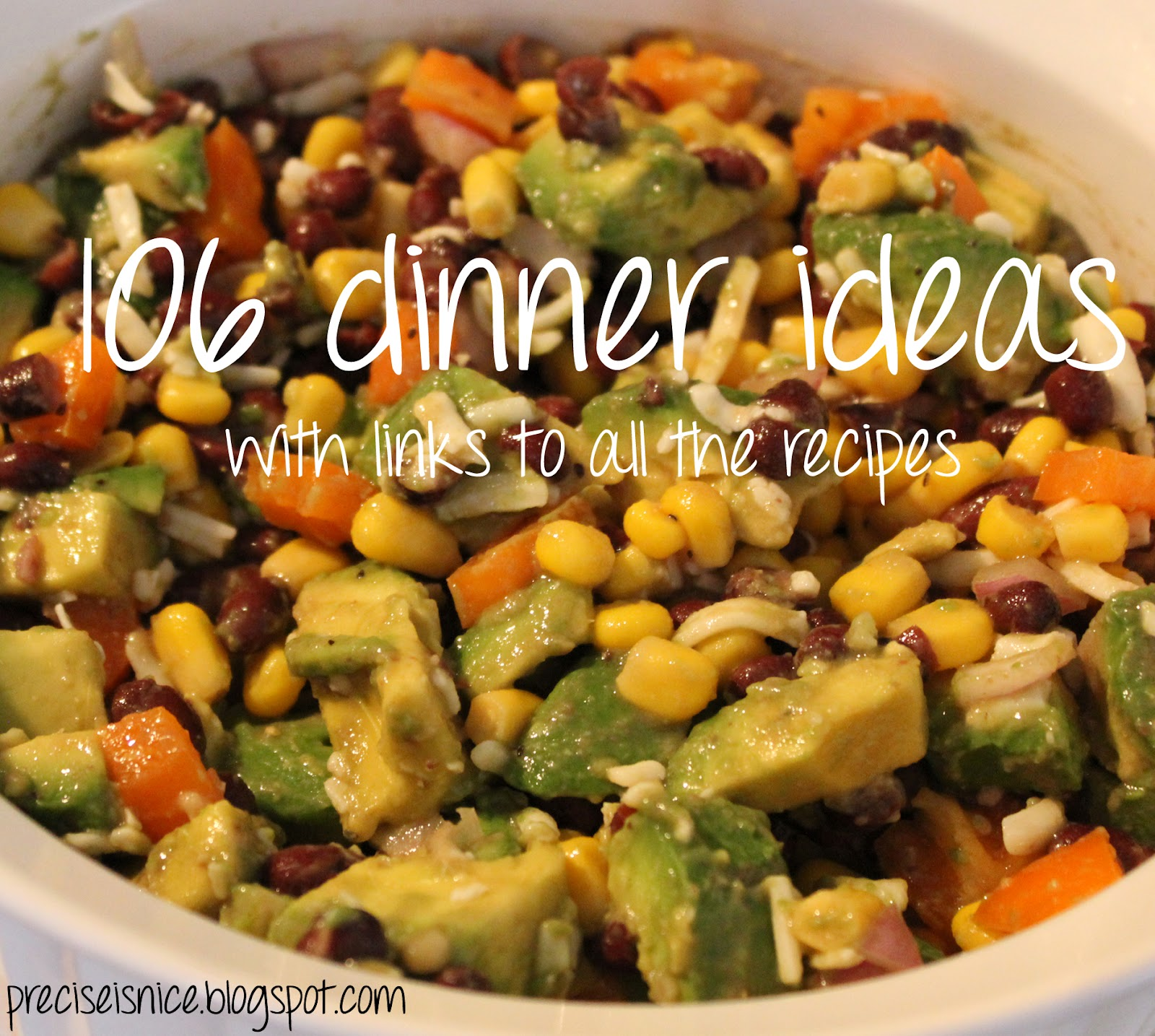 Precise Is Nice: 106 Dinner Ideas