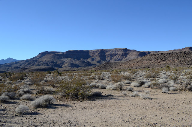 near edge of Wild Horse Mesa