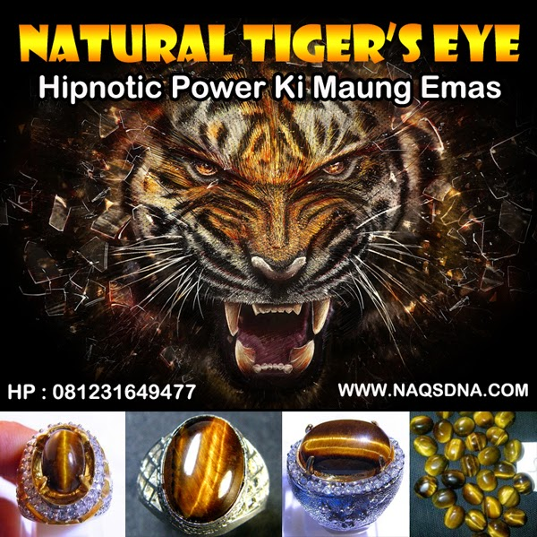 Aura Harimau Emas - NAQS DNA ®