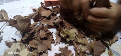 hojas rotas para hacer el suelo de hojas caidas