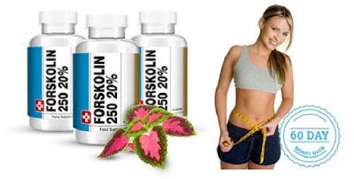 Forskolin 250 Weight Loss Supplement Natural Diet Pills