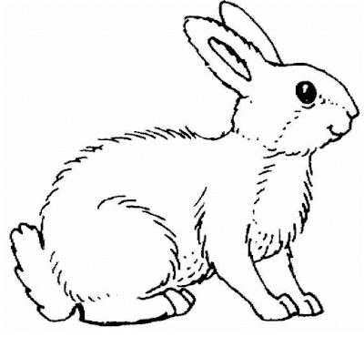 Gambar mewarnai kelinci - 2