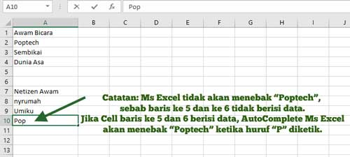 tentang autocomplete ms excel