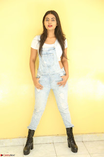 Neha Deshpande in Spicy Denim Jumpsuit and Whtie Crop Top March 2017 018.JPG