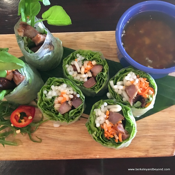 spring rolls at 533 Viet Fusion in Palm Springs, California