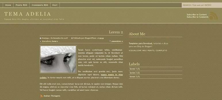 Adelia - Diary Blogger Template - book blog