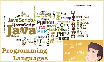best-programming-website-for-beginner