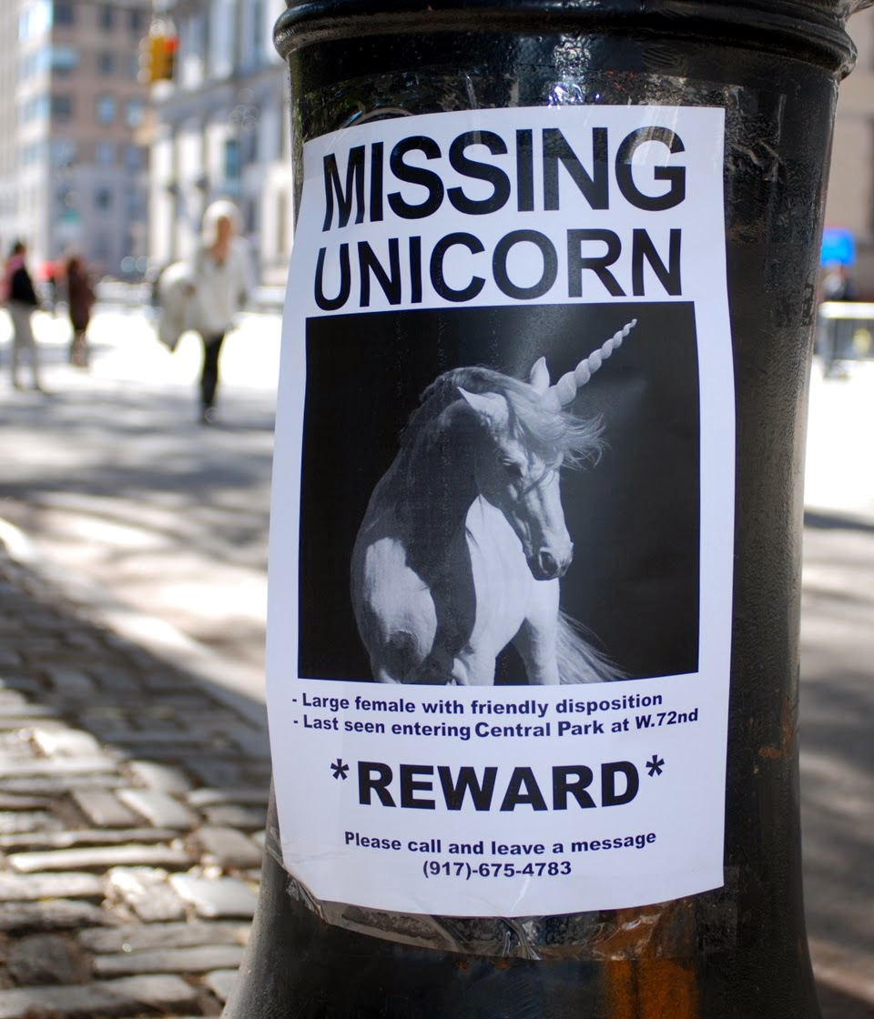 Missing Unicorn - Enhjørning efterlyses