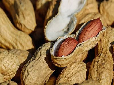 Dry Fruits Name Peanut