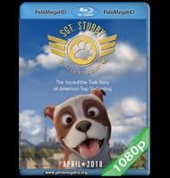 STUBBY, UN HÉROE MUY ESPECIAL (2018) 1080P HD MKV ESPAÑOL LATINO