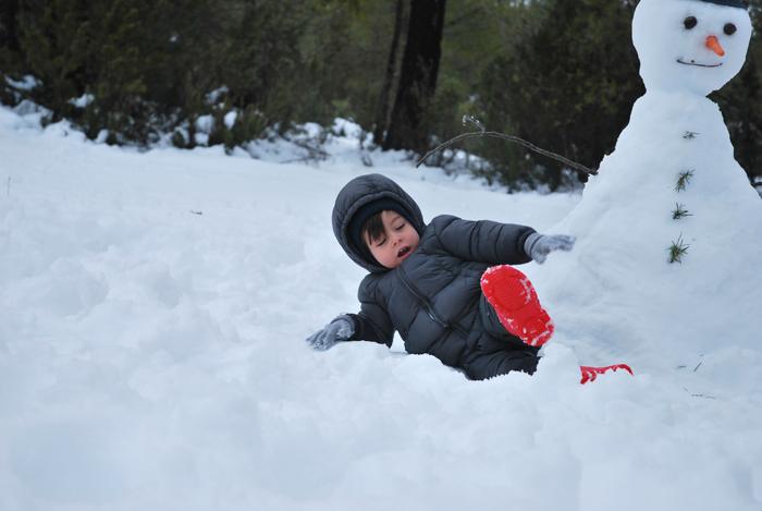 nieve-murcia-campo-de-san-juan-enero-2017