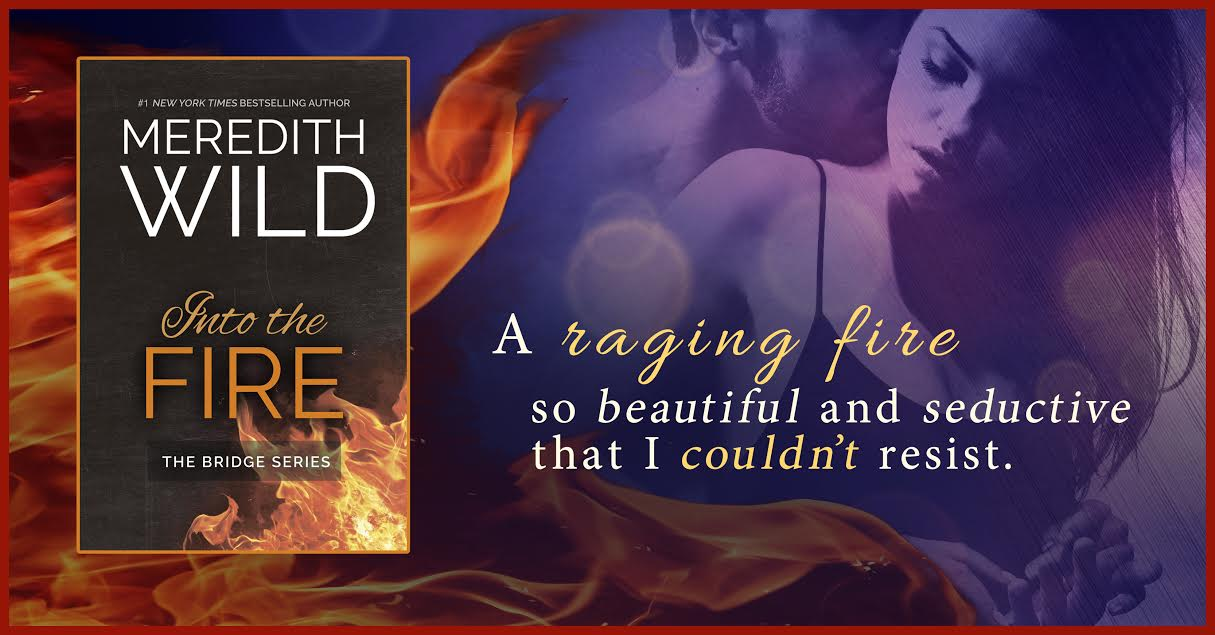 Blog tour and review into the fire by meredith wild the book into the fire by meredith wild the book boyfriend addict fandeluxe Gallery