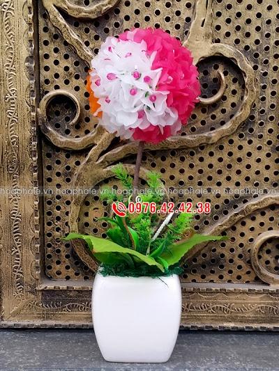 Hoa pha le tai Thanh Oai