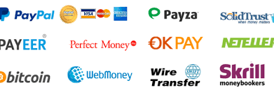 100% Trusted E-Currency Exchanger | Such as Paypal USD To Neteller USD