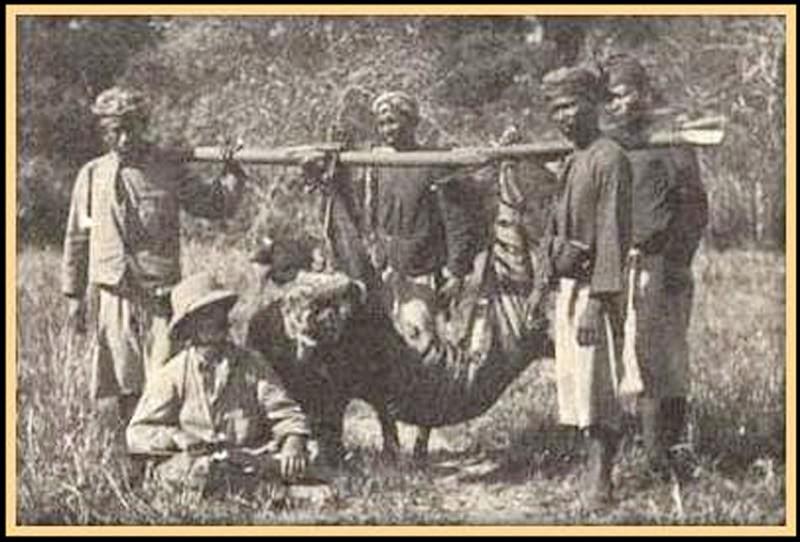 Legenda Manusia Harimau Desa Kumayan Jati Sumatera Selatan
